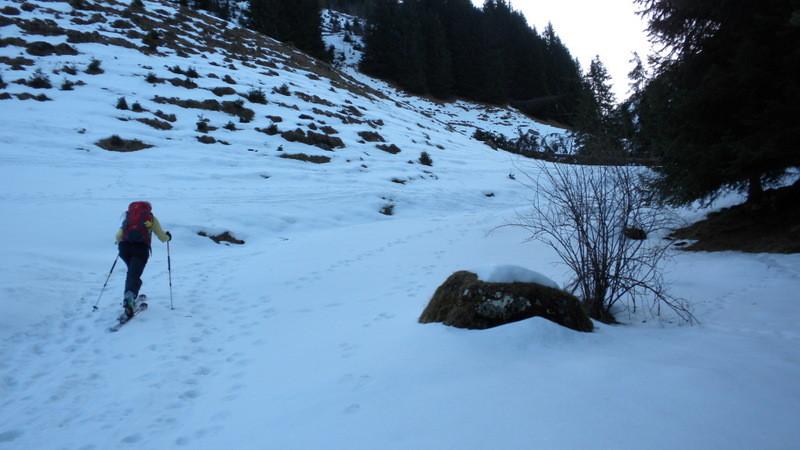 endlich finden wir doch noch Schnee
