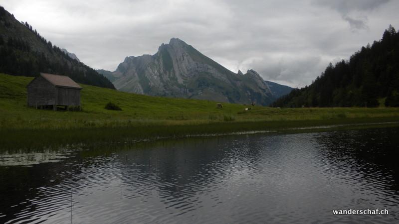 Richtung Wildhuser Schafberg