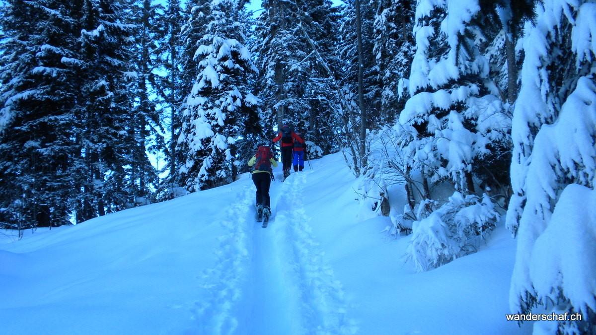 Aufstieg durch die verschneite Märchenlandschaft im Bawald