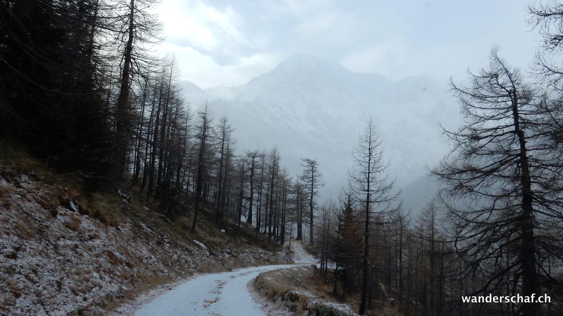 am 2. Januar gibt's eine Wanderung ab Simplon Dorf