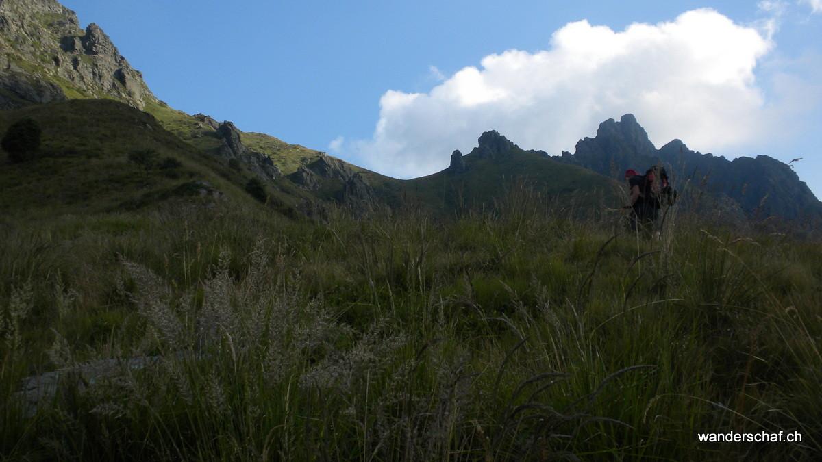 durch hohes Gras steil hinauf Richtung Bocchetta di Terza