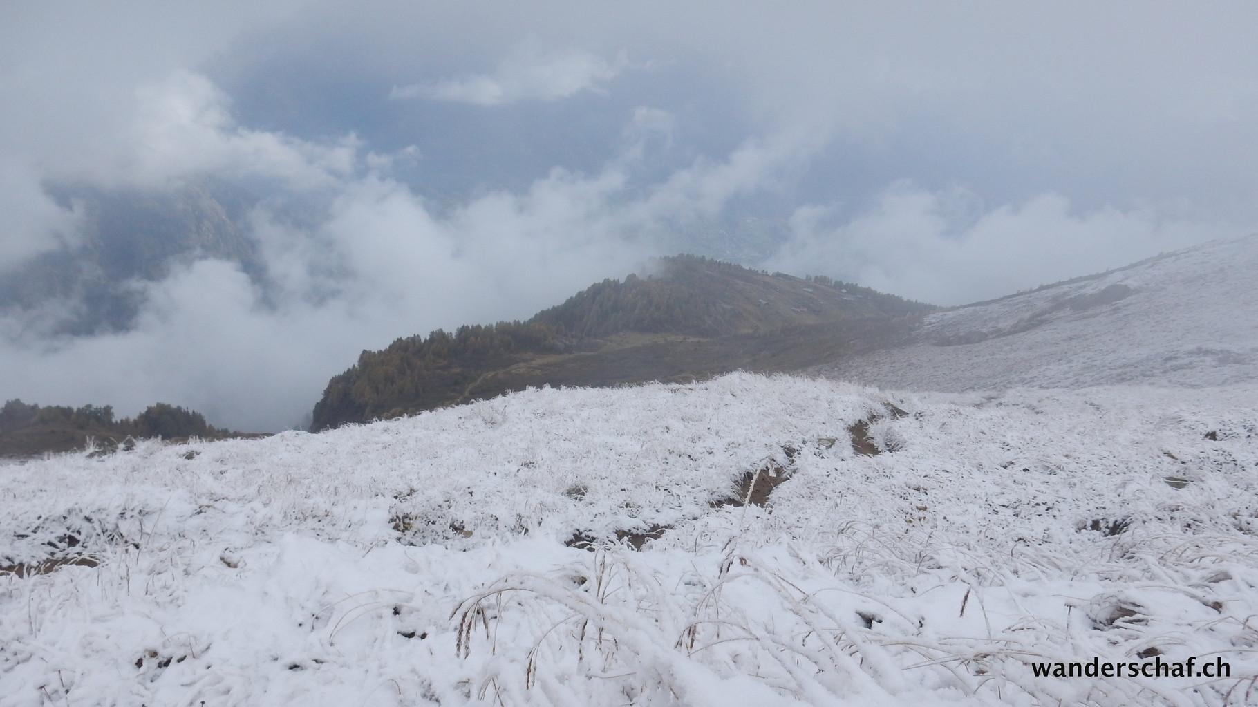 Abstieg Richtung Nesselalp