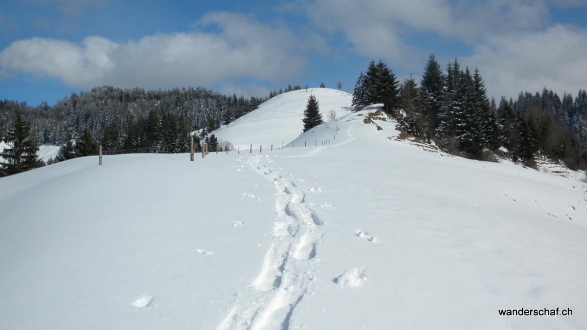 Abstieg über den Rossgrat