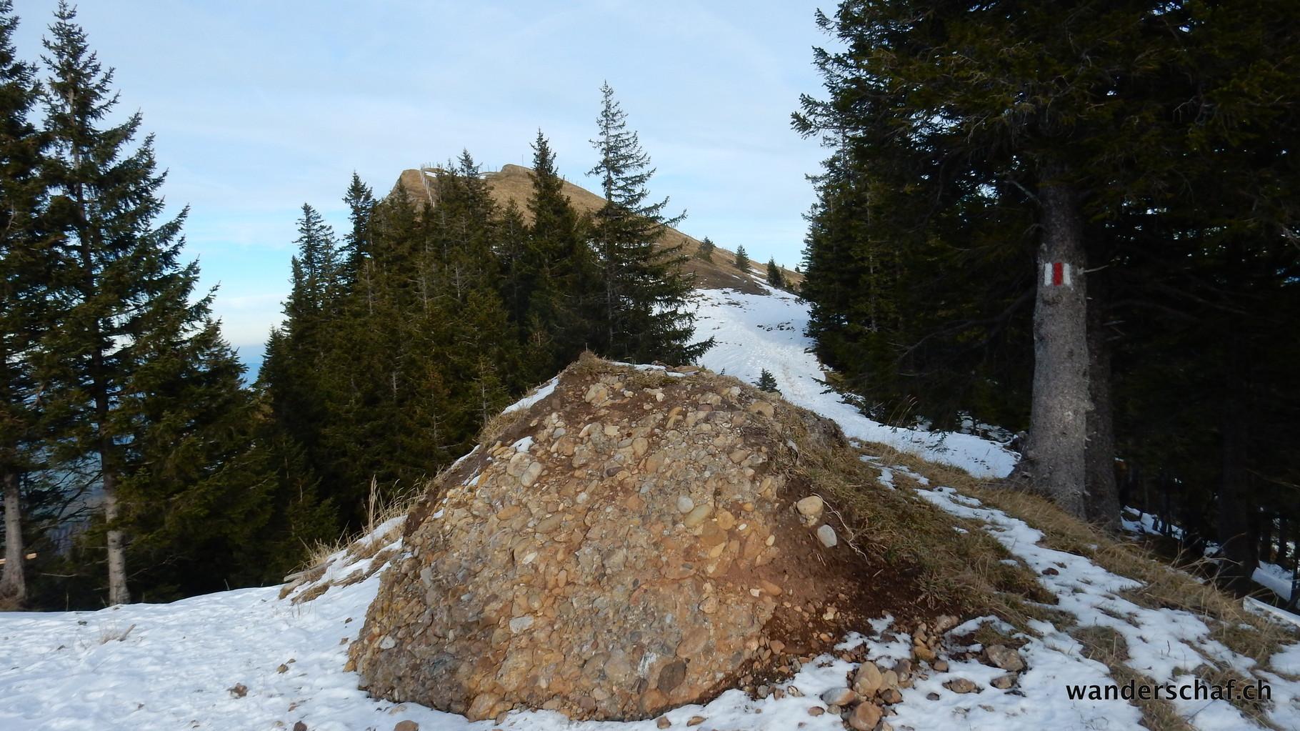 Abstieg Richtung Studberg