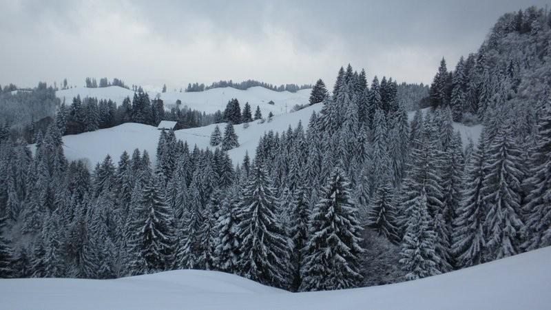 schön verschneite ämmitauer Höger