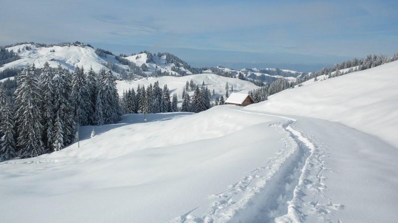 unterhalb der Alp Imbrig