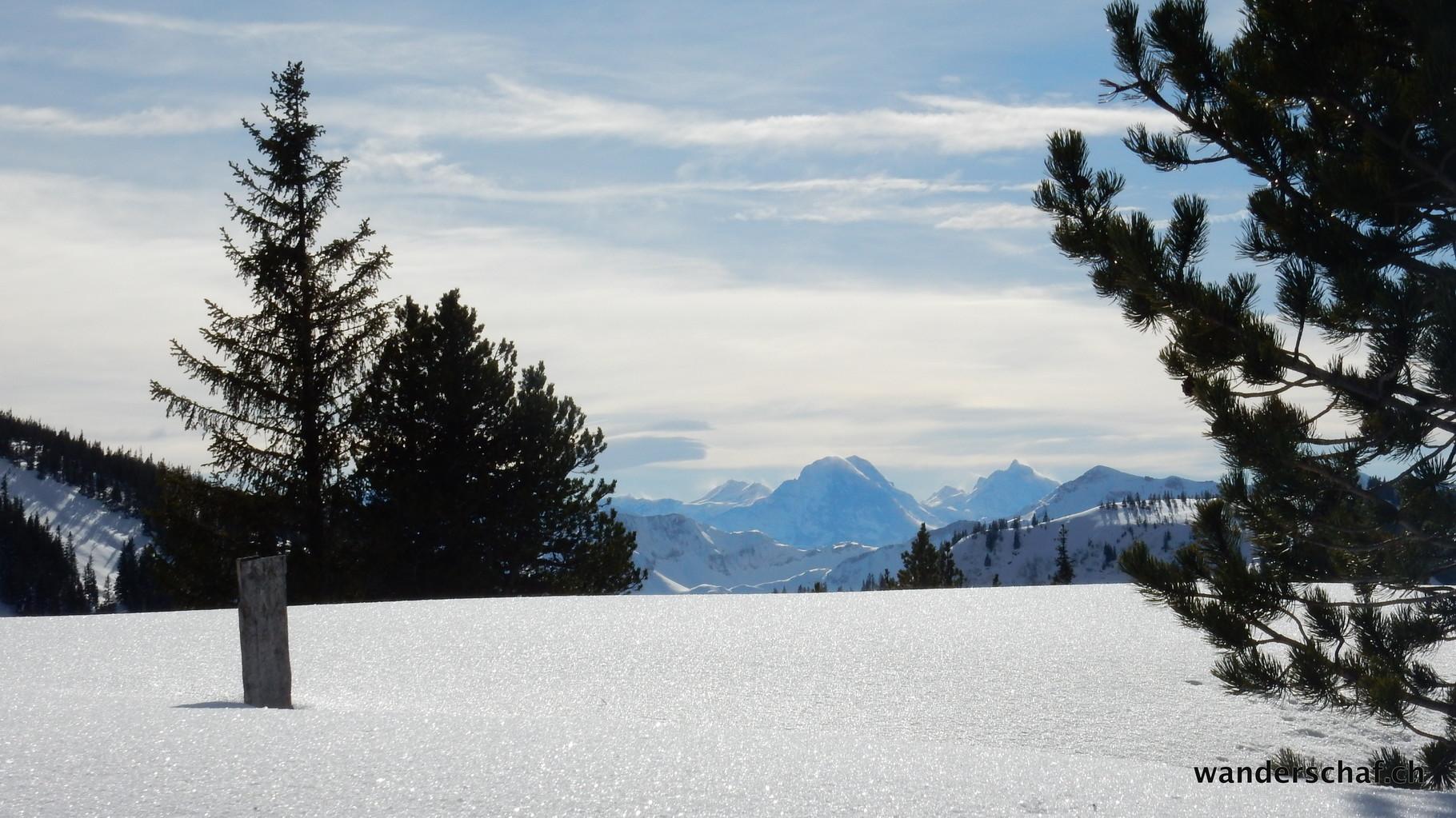 Richtung Berner Alpen