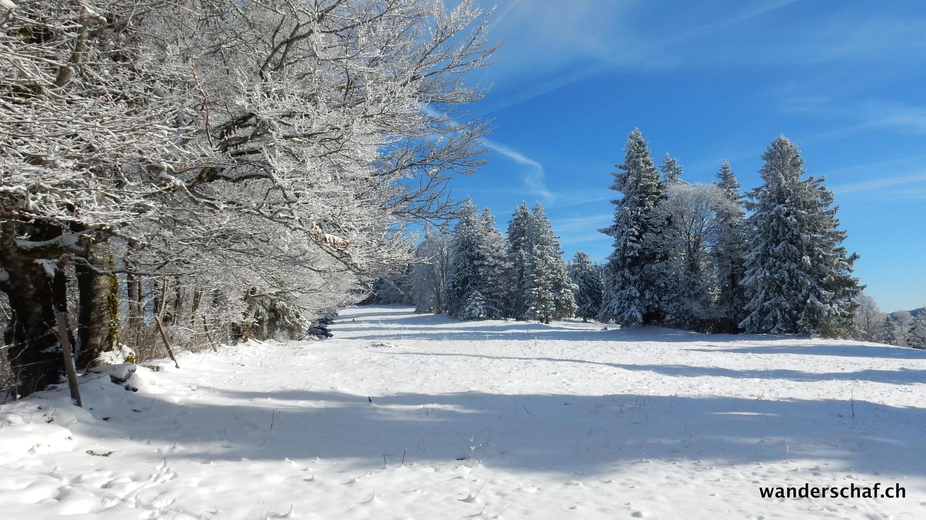hier hat's weniger Schnee als im Emmental