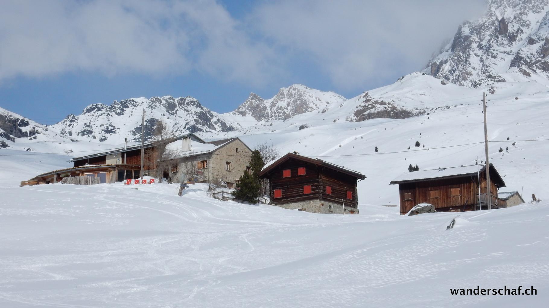 Alp Tgalucas  www.agrotour.ch