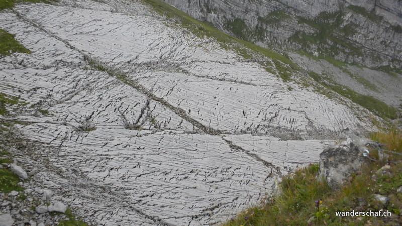 die Kalkplatte unterhalb vom Gipfel