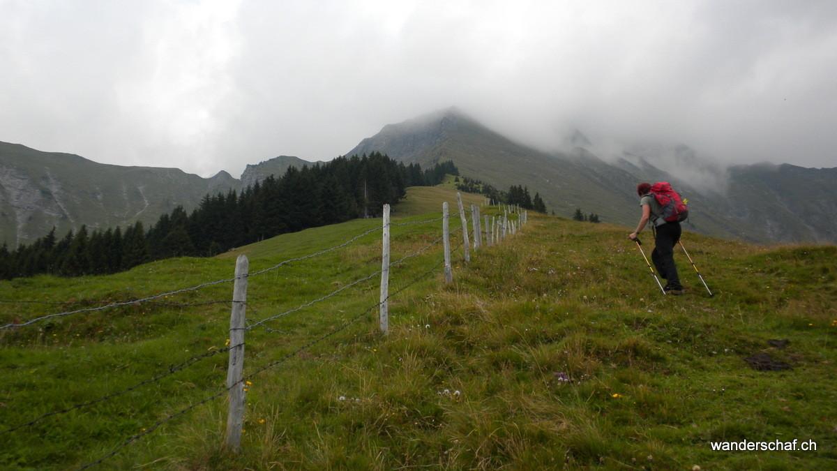 im Aufstieg von Ladholz über den Wildi Alpli Grat