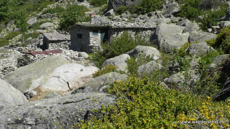 Alpe Timozzu