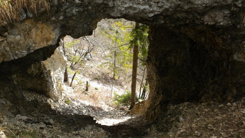 das Naturfenster