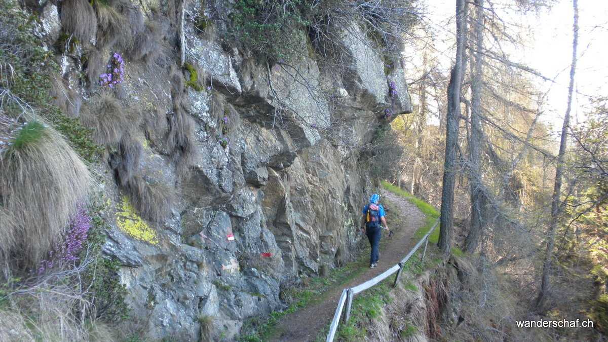 schöner Weg Richtung Alp Arogno