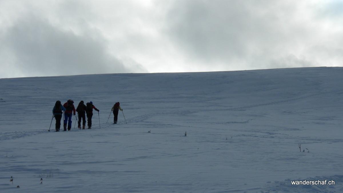 der Gipfelhang vom Buufal
