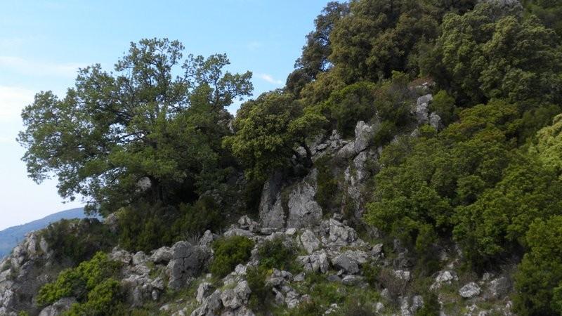 hier suchen wir uns einen Weiterweg zur Pointe de Nevara