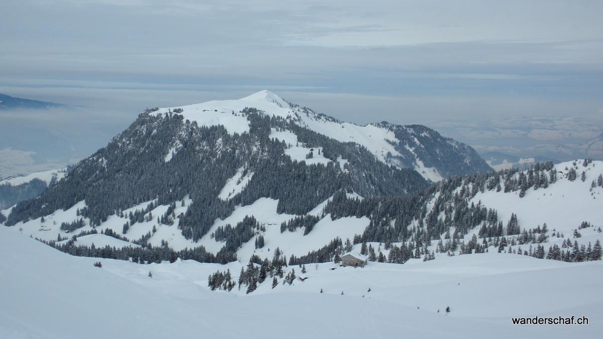 Musenalp und Buochserhorn