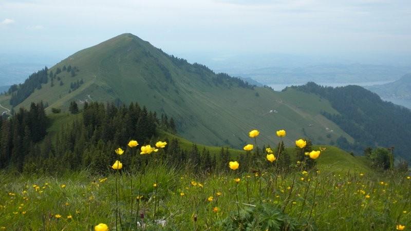 Buochserhorn und der Aufstiegs Grat vom Gross Hornzug