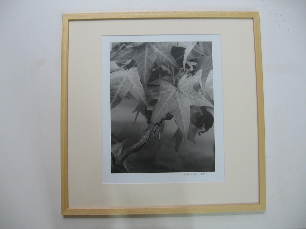 Fotografia d'autore in bianco/nero con cornice in legno naturale e passepartout a smusso.