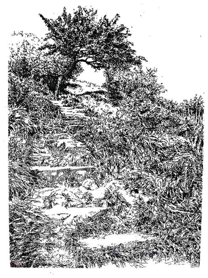 AUFSTIEG BURG HOHENSTEIN, Radierung, 10x15