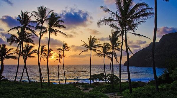 ハワイ挙式の費用相場