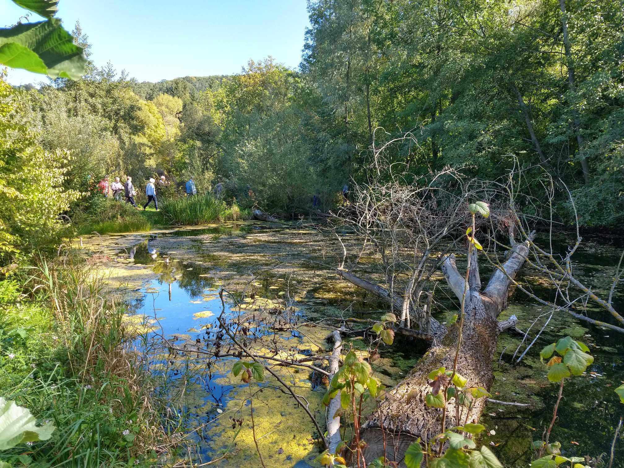 Steinschaler Naturgarten-Führung
