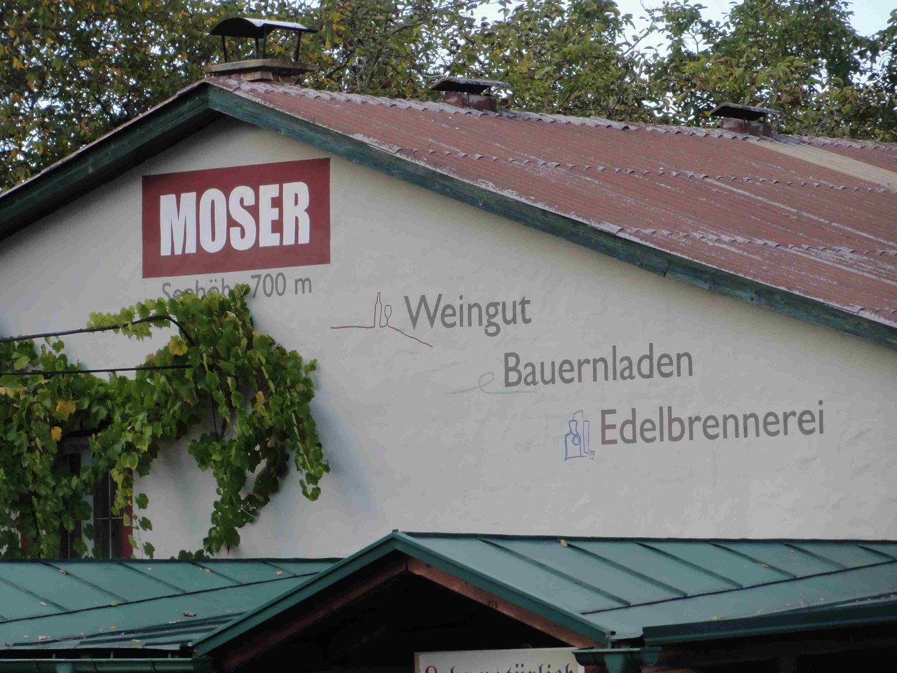 Weingut Moser