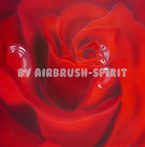 Rose - 10/2014 - auf Leinwand