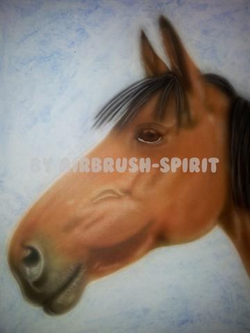 Pferd - 10/2012 - auf Airbrush-Karton - nach einer Fotovorlage von Klaus Eppele