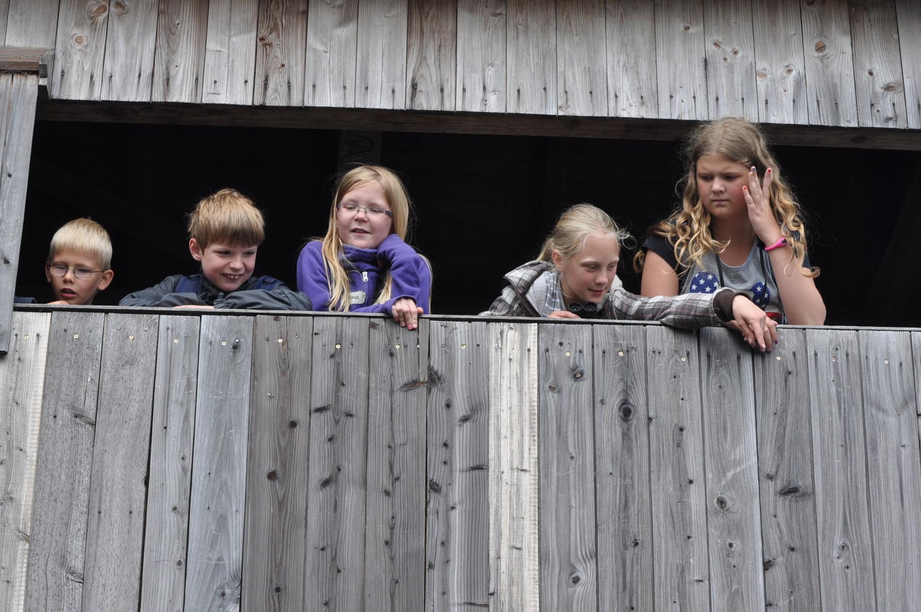 Ferienspaß-Teilnehmer im Aussichtsturm am Steinhuder Meer