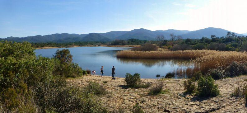 Le lac des Escarcets dans la Plaine des Maures du Var