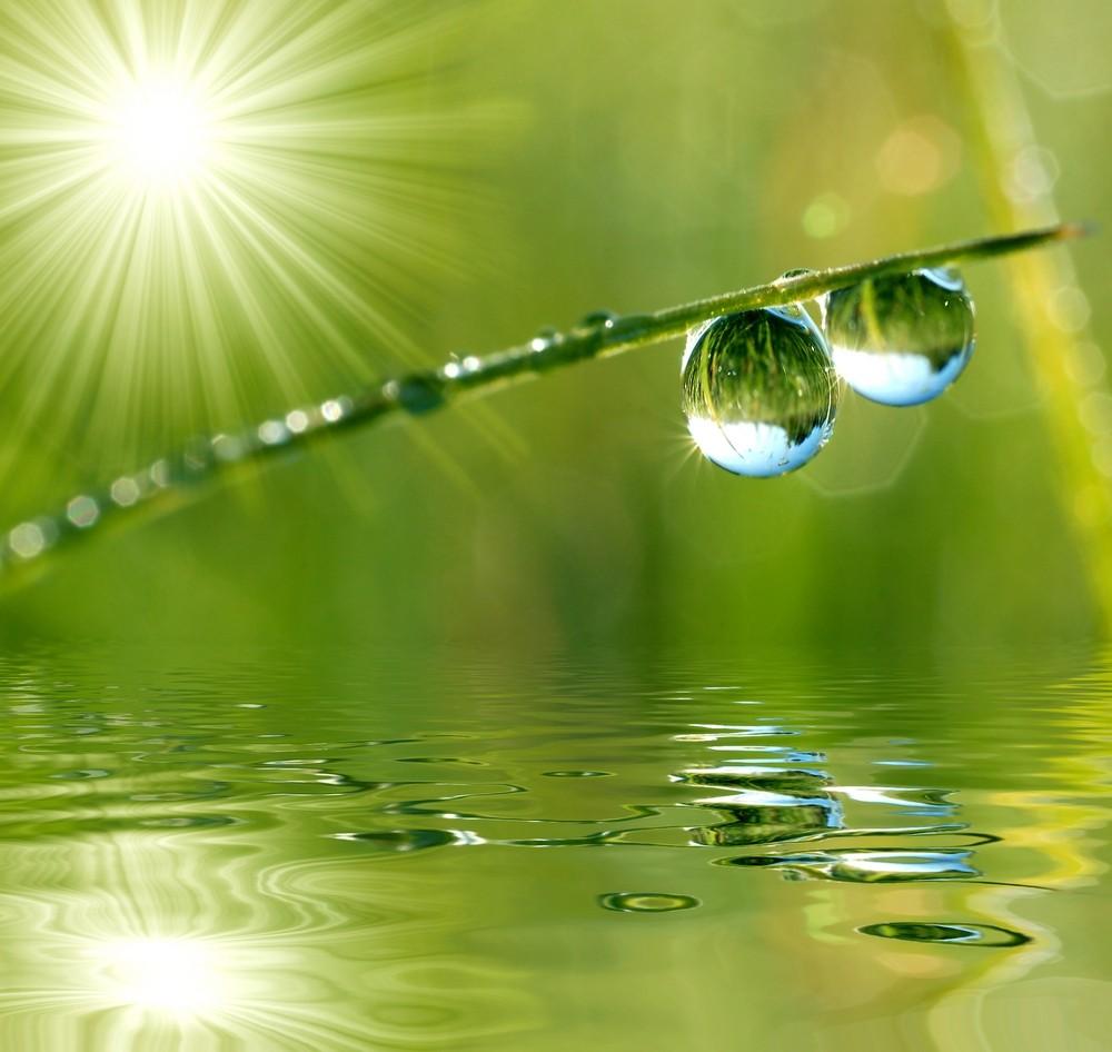 L'instant présent, le Lâcher prise, La pleine conscience, La méditation