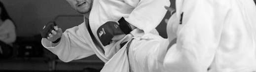 L'art du Jujitsu