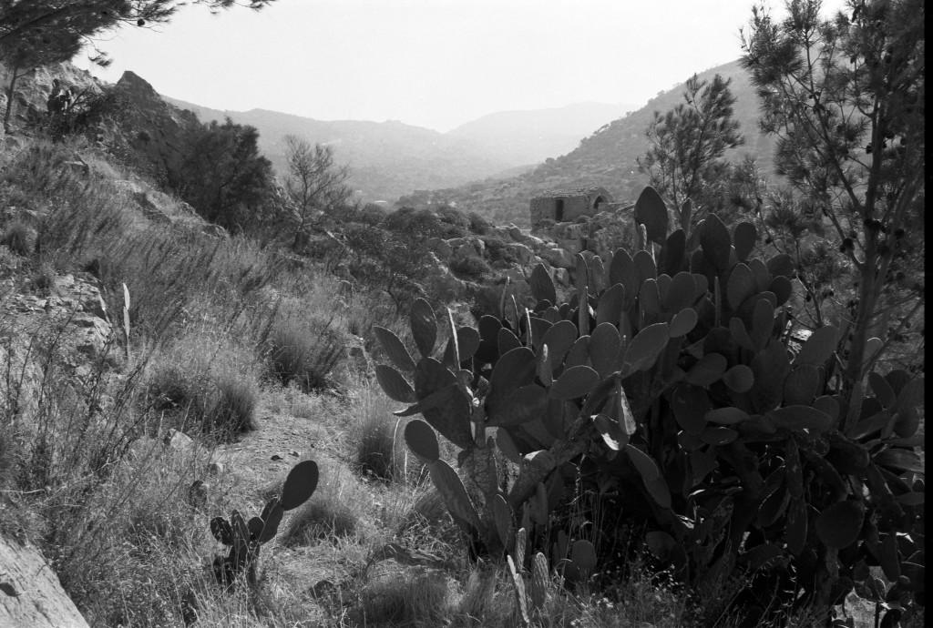 Landschaft nahe Cefalu, Sizilien