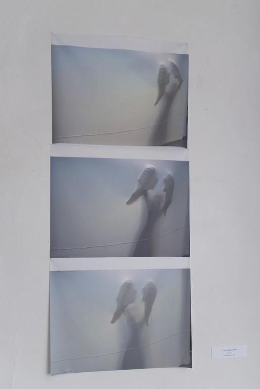 """Edelgard Stryzewski-Dullien, Fotos der Performance """"Ent-Wicklungen"""""""