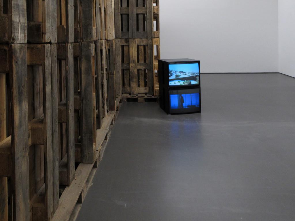 Habitat 3, René Zeh
