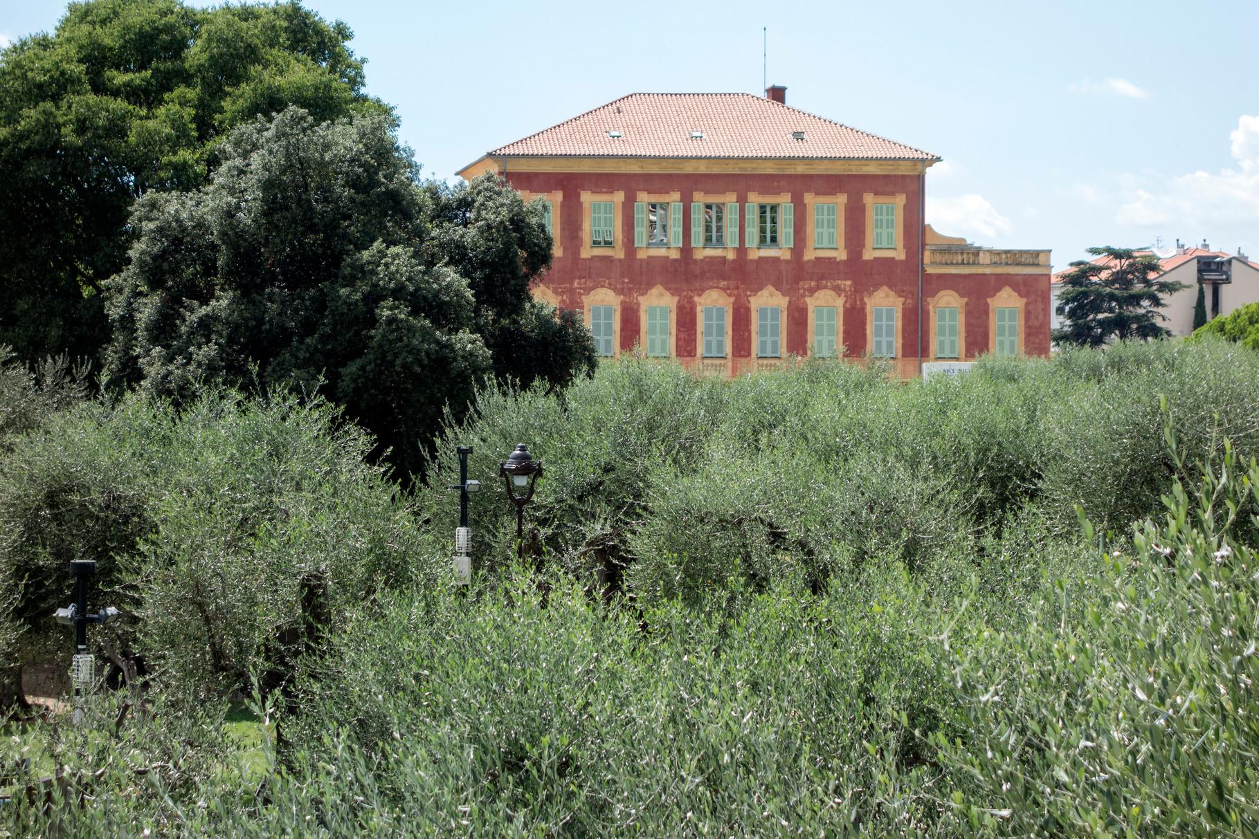 Musée Matisse inmitten von Olivenbäumen