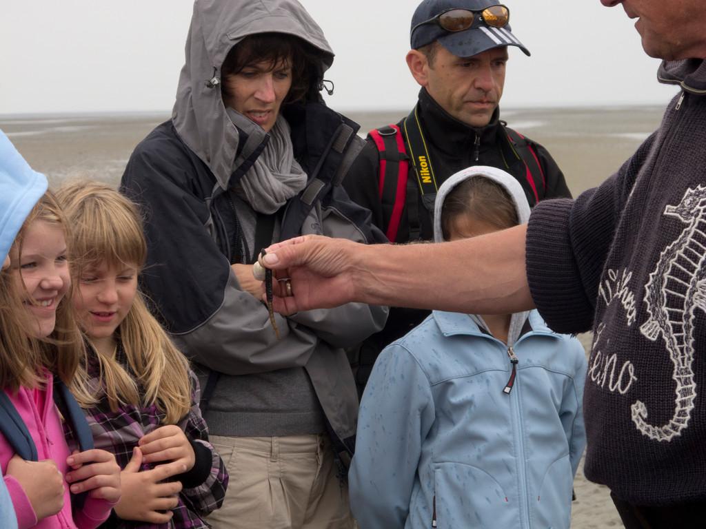 Heino zeigt einen Sandpierwurm