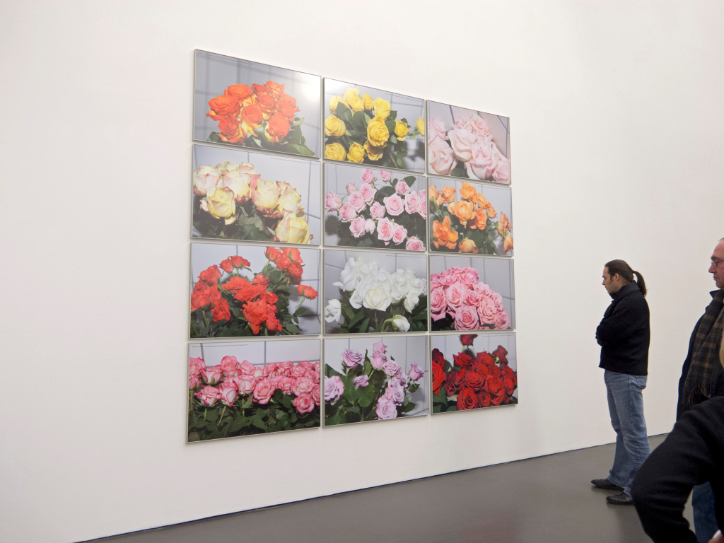 Sven Johne, Roses from Africa, 2011