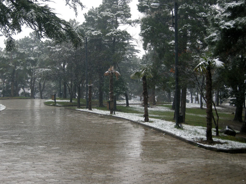 Park nahe dem Rustaveli-Boulevard