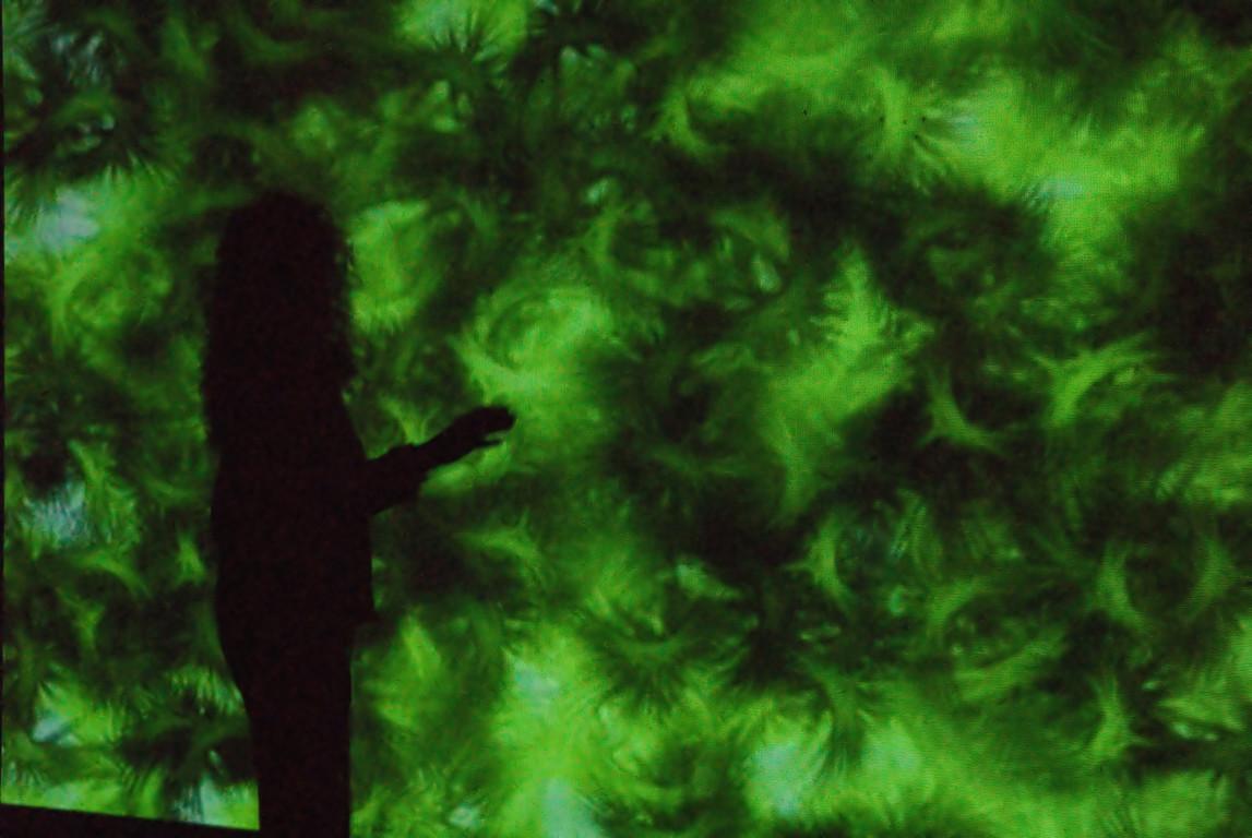 Doris Schöttler-Boll vor Projektion von Erwin Wiemer, 2008