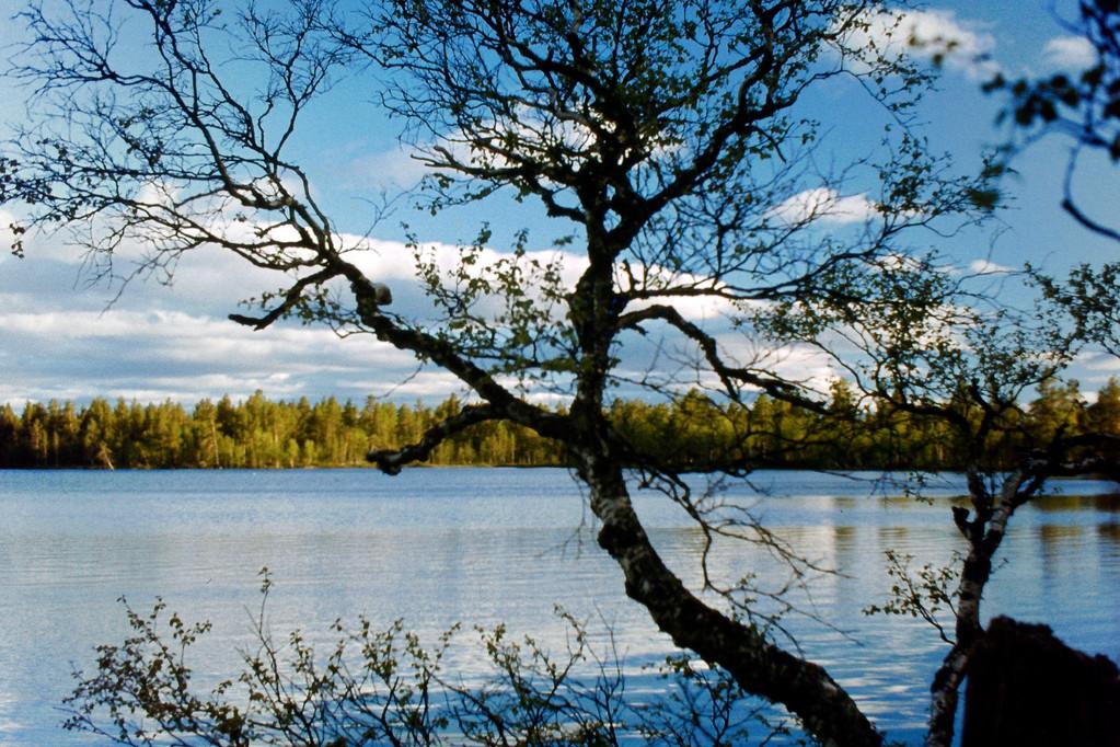 unser See direkt vor der Hütte