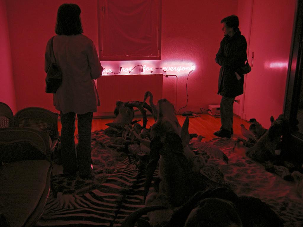 Heimir Björgúlfsson: allure torrid fantastic (2010) im Wohnzimmer eines Privathauses