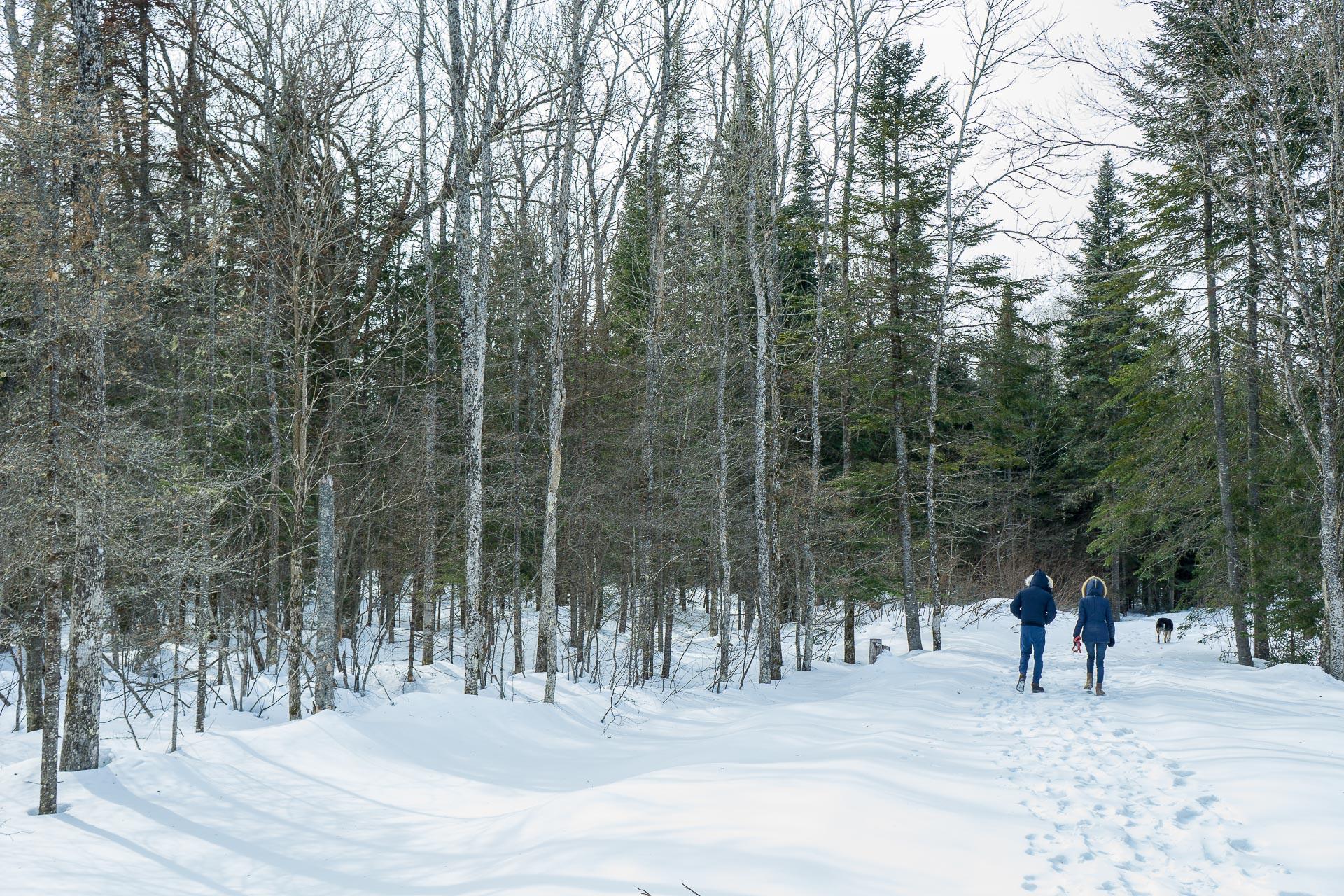 Dimanche 2 avril: L'hiver sans fin du Québec