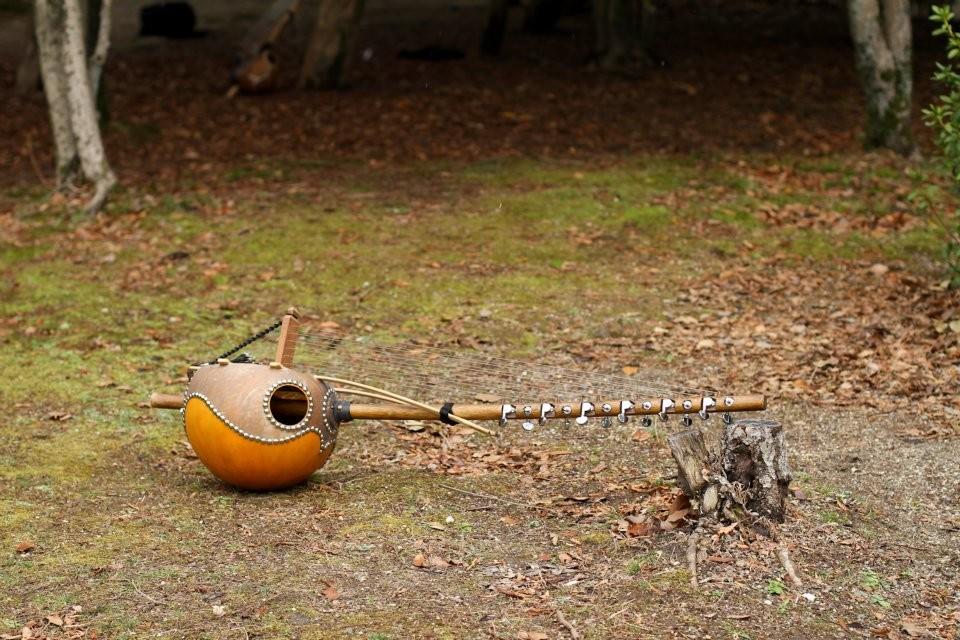 ブイ製カメレンゴニ(アフリカンハープ・12弦)