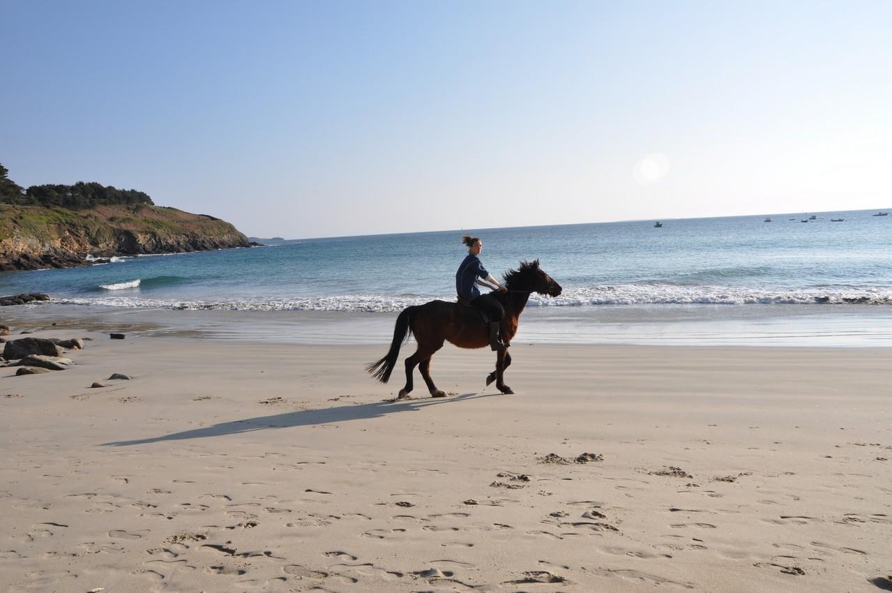 Promenade à cheval sur la plage de Kerhornou