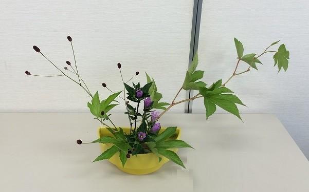Nodokaさんの作品です。