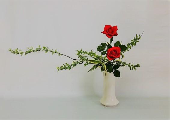 <こでまり 薔薇(バラ) ドラセナ・サンデリアーナ> Chiakiさんの作品です。