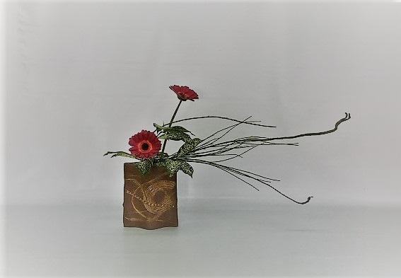 <石化エニシダ ガーベラ ゴッドセフィアナ> Tamikoさんの作品です。