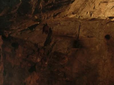 矢ノ森金山跡の洞窟を進むと『こうもりがあらわれた』。ドラクエか! 思わずビビッて大きな声をあげてしまい、その声で周囲の方達を驚かせてしまいました。まさに黄金バット